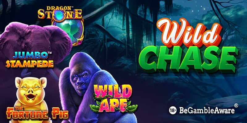 Photo of Wild Chase is on at BGO Casino