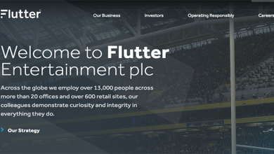 Flutter Entertainment