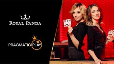 Photo of New Live Casino Offering for Royal Panda